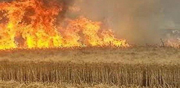 حريق الحسكة